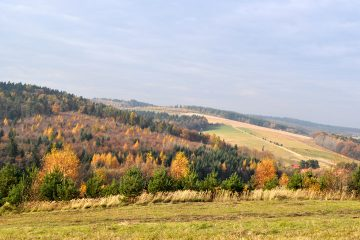 Boska Dolina - Stadnina koni w Dylągówce, konie Rzeszów, jazda konna Rzeszów, agroturystyka, noclegi, wypoczynek aktywny