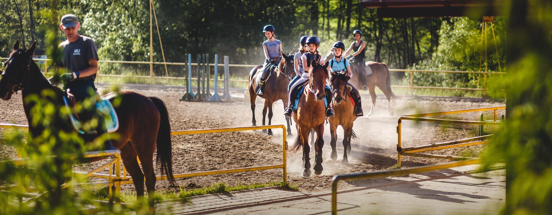 Boska Dolina - nauka jazdy konnej, Stadnina koni w Dylągówce, konie Rzeszów, jazda konna Rzeszów, agroturystyka, noclegi, wypoczynek aktywny